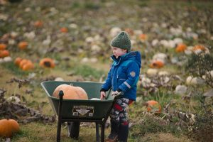 Kilduff Farm East Lothian pumpkin patch shoot_0024