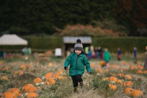 Kilduff Farm East Lothian pumpkin patch shoot_0029